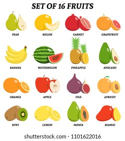 Vector illustration of set of fruits with signatures
