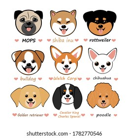 vector illustration set with funny cute chibi dogs of different breeds. The picture shows dogs of the Shiba Inu, Poodle, Rottweiler, Welsh Corgi, Golden Retriever, Chihuahua, Spaniel, Bulldog and Pug