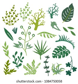 Vector illustration set of hand drawn plants and leaves