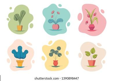Vector illustration set of houseplants in flowerpots.
