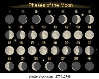 Vector illustration set icons  phases of the Moon.