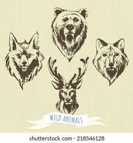 Vector illustration Set of marker hand-drawn forest animals: wolf, bear, deer, fox