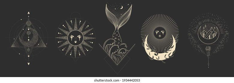 Vector illustration set of moon phases. Different stages of moonlight activity in vintage engraving style. branches of plants and flowers. sacred esoteric geometry