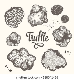 Vector illustration with set of mushrooms in sketch style. Hand-drawn truffle on brown background. Delicatessen French products. Autumn forest harvest.
