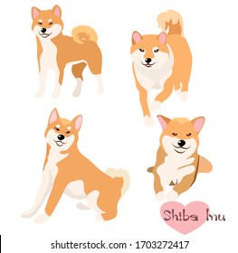 Vector illustration set of Shiba Inu dog in deferent pose. Hand draw on white background.