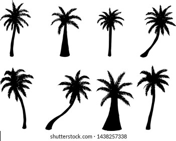 Vector illustration. set of silhouettes of palm trees on white background.