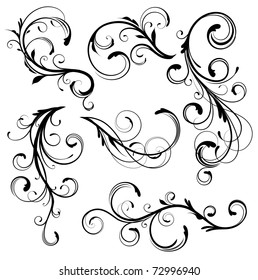 Vector illustration set of swirling flourishes decorative floral elements