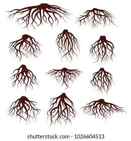 Vector Illustration : Set of tree roots