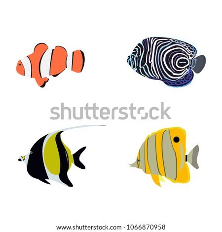 Vector Illustration Of A Set Tropical Fish On White Isolated Background Template For Web