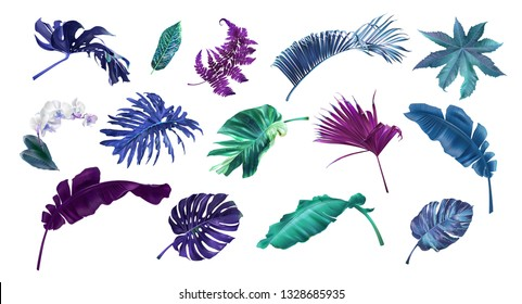 Vector illustration set of tropical leaves and flowers isolated on white background. Highly detailed colorful plant collection. Botanical elements for cosmetics, spa, beauty care products