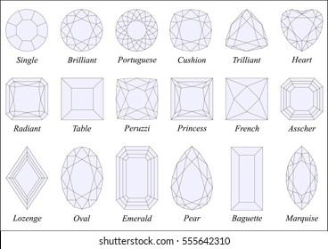 Vector illustration set of various diamond cut shapes and design with their names. Black wireframe and light blue tinted facets, top view