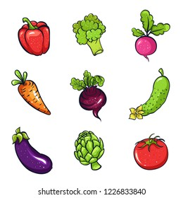 Vector illustration set of vegetables: radish, peper, broccoli, tomato, artichok, eggplant, beet, cucumber and carrot. Sketch, color. Vivid picture of a vegetable. Fresh food