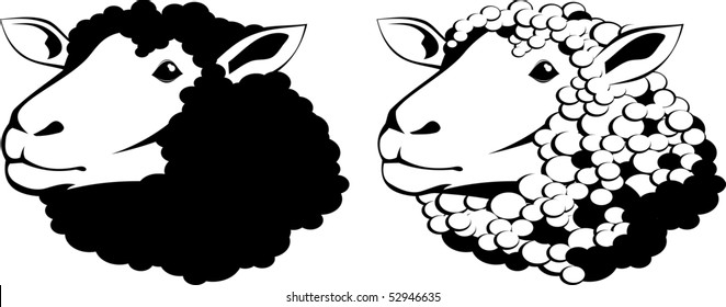 Vector illustration of a sheep black and white
