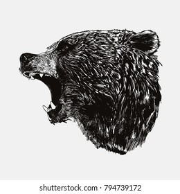 Vector illustration of side view roaring brown bear silhouette