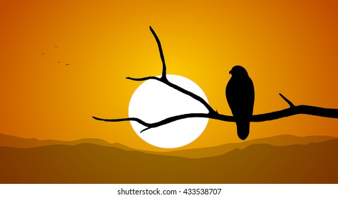 Vector illustration: Silhouette of Buzzard sitting on a dry branch against the setting sun.