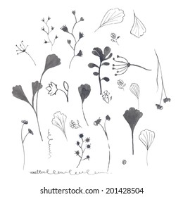Vector illustration of the silhouette of plants. Hand ink drawings.