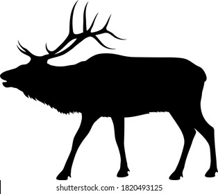 Vector illustration of a silhouette of a standing, bugling bull elk against a white background.