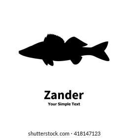 Vector illustration silhouette of zander. Isolated fish on a white background. Silhouette walleye.