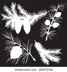 vector illustration silhouettes of fir branches