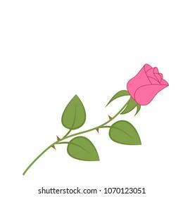 vector illustration of single flower of  pink rose. Symbol of love
