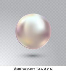 Vektorgrafik einer einzelnen glänzenden, natürlichen Austernperle mit Lichteffekten einzeln auf transparentem Hintergrund. Schöne 3D-glänzende, realistische Perle für luxuriöse Accessoires.