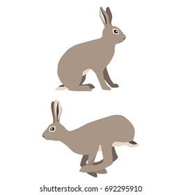 Vector illustration of sitting and jumping hares isolated on white background