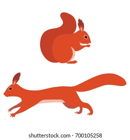 Vector illustration of sitting and jumping squirrels isolated on white background