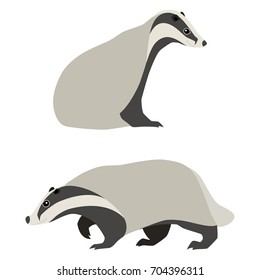 Vector illustration of sitting and walking badgers isolated on white background