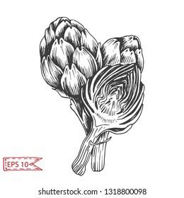 Vector illustration sketch artichoke. Vegetable hand drawn card.