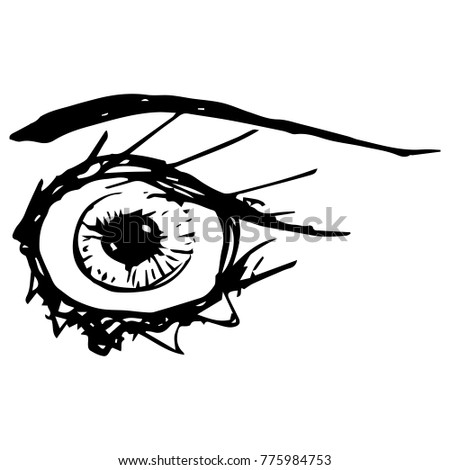 Vector Illustration Sketch Eye Eyelashes Stock Vector Royalty Free