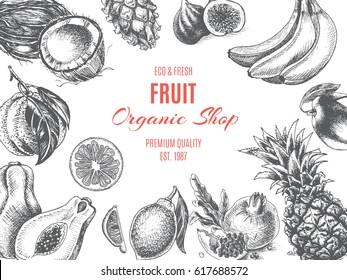 Vector illustration sketch - Fruit. Card Menu organic shop. vintage design template, banner.