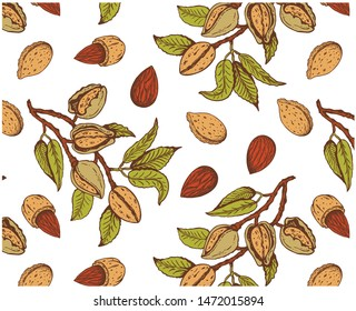 Vector illustration of sketch hand drawn pattern with colorful branches almond nuts, tree. Vintage,organic, vegan, food, floral background. Botanical plants drawing wallpaper. Line Art, engraving