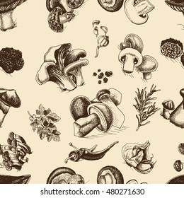 Vector illustration sketch - mushrooms - Russula mushrooms, Truffle, Honey mushrooms, Field mushrooms, Shiitake, Boletus, Ceps, Chanterelle