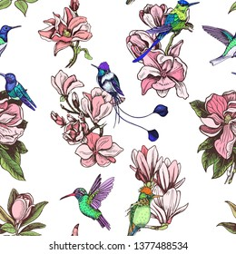 Vector illustration sketch pattern - card with flowers magnolia and hummingbird.