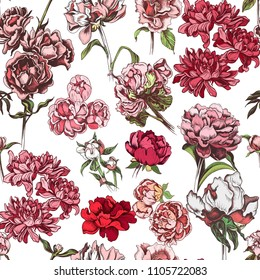 Vector illustration sketch - pattern with flowers chrysanthemum, peony. Colorful flowers vector illustration.
