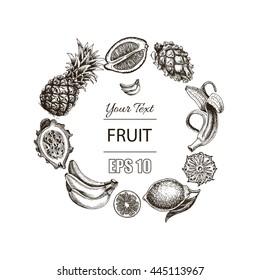 Vector illustration sketch  pineapple, banana, dragon fruit, citrus. Illustration - fruit.