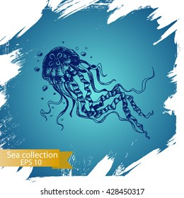 Vector illustration sketch - Sea collection. jellyfish