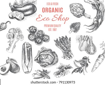 Vector illustration sketch - vegetables. Card organic shop. vintage design template, banner.