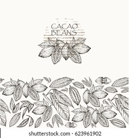 Vector illustration.  Sketched hand drawn cacao beans, cacao tree leafs and branches. Seamless pattern, element of brand style.