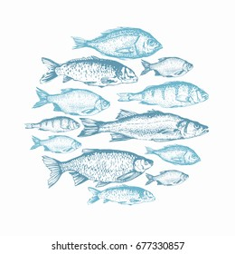 Vector illustration with sketches of fish. Round composition. Hand drawn fish. Blue design. Fish Market. Poster for seafood menu.