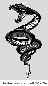 Vector illustration of snake with an open mouth on gray background