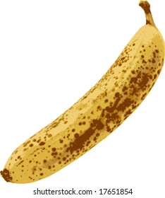 vector illustration of speckled banana isolated on white
