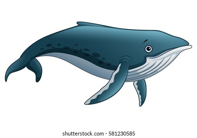 Vector illustration of Sperm whale cartoon