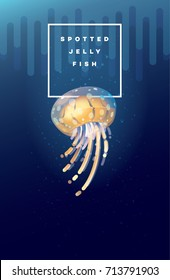 Vector illustration of Spotted Jellyfish swimming under the ocean surface