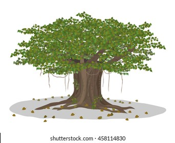 Vector Illustration: Standing timber Bodhi tree and young plant Symbols of Buddhism isolated on white background.