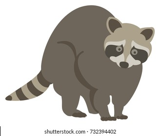 Vector Illustration of a Startled Raccoon