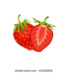 Vector illustration of strawberry whole and slice isolated on white background.