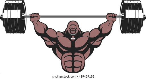 Vector illustration, strong ferocious gorilla performs an exercise with a barbell over his head