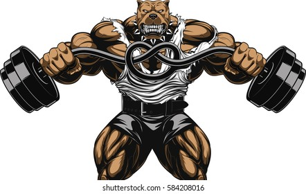 Vector illustration of a strong  pitbull with big biceps, bends the barbell, bodybuilder