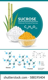 Vector illustration. Structural chemical formula and model of sucrose. White and brown sugar cubes in bowls